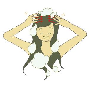 頭頂部(2)