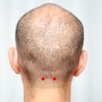 頭のツボ大辞典:「天柱(てんちゅう)」の位置と効能